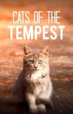 [CLOSED] Winged Cat Roleplay: Cats of the Tempest by Tardiscat