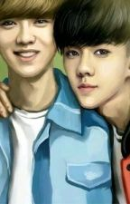 Brothers In Love [HunHan/SeLu] by Scarlet_Myu