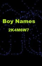 Ideas for Boy Names by 2K4M6W7