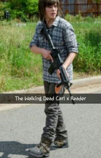 T.W.D. Carl x Reader Discontinued