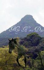 My Horse Dojo by bradi1