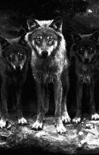 New Wolf [malexmale] by obsidianalicorn