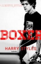Boxer  |H.S| by adictive_styles