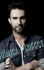 Química Perfecta  (Adam Levine y Tu) by Roomii15