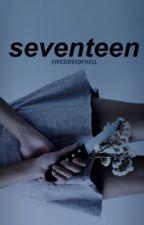 Seventeen //Irwin by fivesauceofpizza