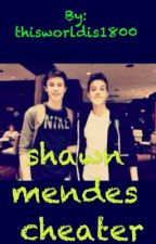 shawn mendes cheater imagine wattpad by thisworldis1800
