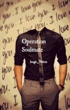 Operation Soulmate by Jungle_Walrus