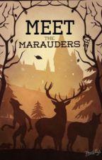 Meet the Marauders {marauder x reader & short stories *requests OPEN!*} by sherbet-lemon