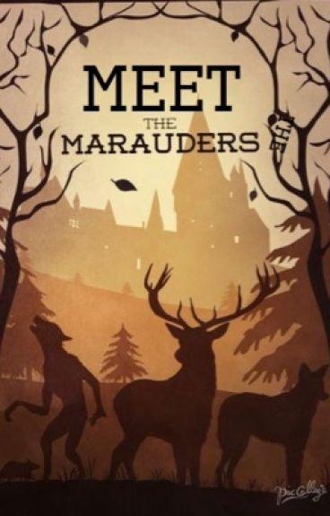 Meet the Marauders {marauder x reader & short stories *requests closed*}