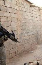 The Last Battle Of Iraq by lucasmcq1
