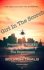 Girl In The Scorch (Newt X Reader Book 3) by abbiethegreenie