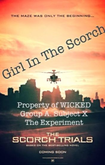 Girl In The Scorch (Newt X Reader Book 3)