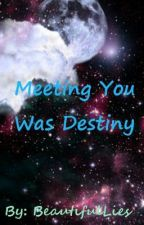 Meeting You Was Destiny by BeautifulLies