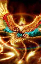 Harry Potter i Bractwo Złotego Feniksa by carmendraconi