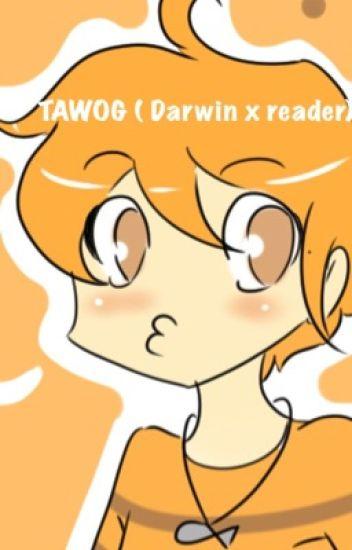 TAWOG ( Darwin x reader)