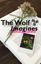 The Wolf Imagines by gladewolf