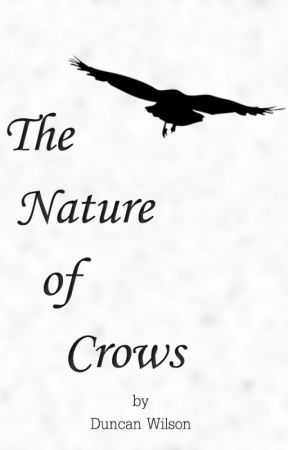 The Nature of Crows by WilsonDuncan