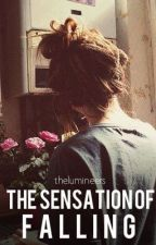 The Sensation of Falling by thelumineers