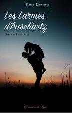 Les larmes d'Auschwitz by deb3083