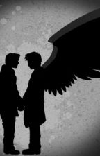 Wings (Destiel- Supernatural AU) by SnakeInAHat