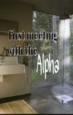 First meeting with the alpha by Rubius15