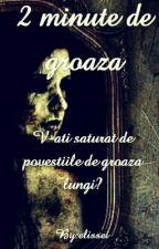 2 Minute De Groaza by elissei