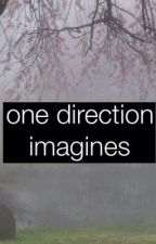 One Direction Imagines and Preferences❤ by niallgirlwriterxx