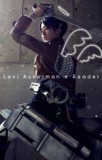 Levi Ackerman x Reader by DynahSaur