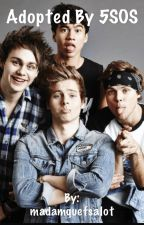 Adopted by 5SOS by madamquefsalot