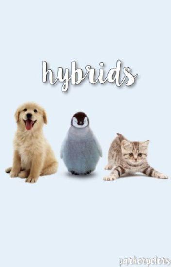 hybrids ; 5sos ✔️