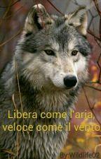Libera come l'aria, veloce come il vento by Wildlife02