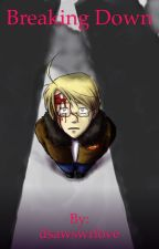 Breaking down                             A hetalia 9/11 fanfiction by teal_in_the_rain