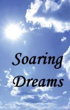 Soaring Dreams by blazing_dreams4