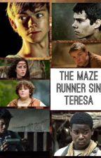 MAZE RUNNER SIN TERESA by not_romeo_newt