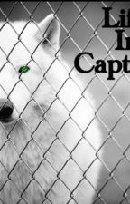 Life In Captivity by Denniswestower
