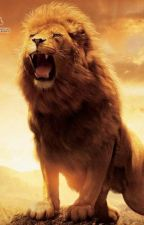 Cachorro de león Regulus x Yato (yaoi) by natsuno590
