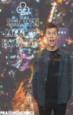 Shawn Mendes Imagines by praisingmendes