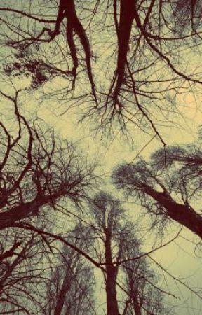 Fragments by Deryn_Forever