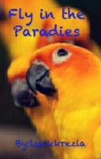Fly in the paradise #wird nicht mehr weiter geschrieben by Sweet-Mandarin