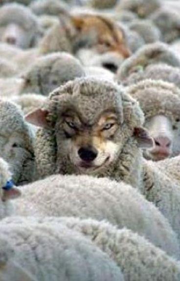 Wolves Among the Sheep (Girl x Girl)