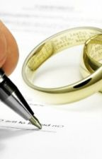 CONTRACT PRENUPTIAL by liliannalina
