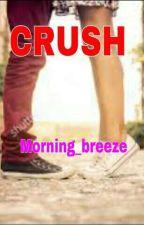 crush (persian translation) by Morning-breeze