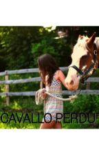 IL CAVALLO PERDUTO by _elee_01