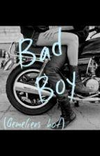 Bad Boy (Gemeliers Hot) by OvieedoTwiins