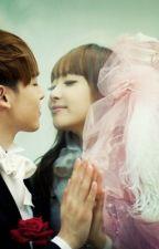 (Chuyển ver) Hợp đồng hôn nhân 100 ngày  by HongVnAnh