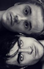 Drarry; Love is Love by Ziall_Larry_Drarry