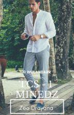 [TCS-2] Minedz by Wulandarr