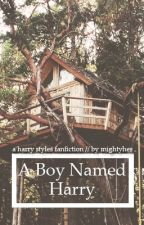 A Boy Named Harry (Harry Styles) by mightyhes