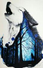 Instituição Wolf Kimberley (Em Revisão) by DaphWinchester