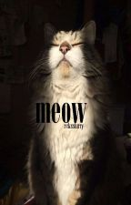 meow || l.s by rcksslarry